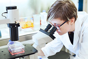 A researcher looks for signs of early pancreatic cancer in a microscope slide.