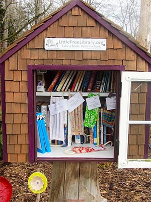 PanCAN partner Little Free Library becomes essential neighborhood centers during outbreak.